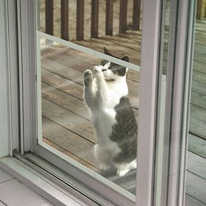 Claws Off Screen Door Protector Save Screens From Pet Or People Damage Installs In Seconds And Snaps On Screen Door Protector Diy Screen Door Door Protector