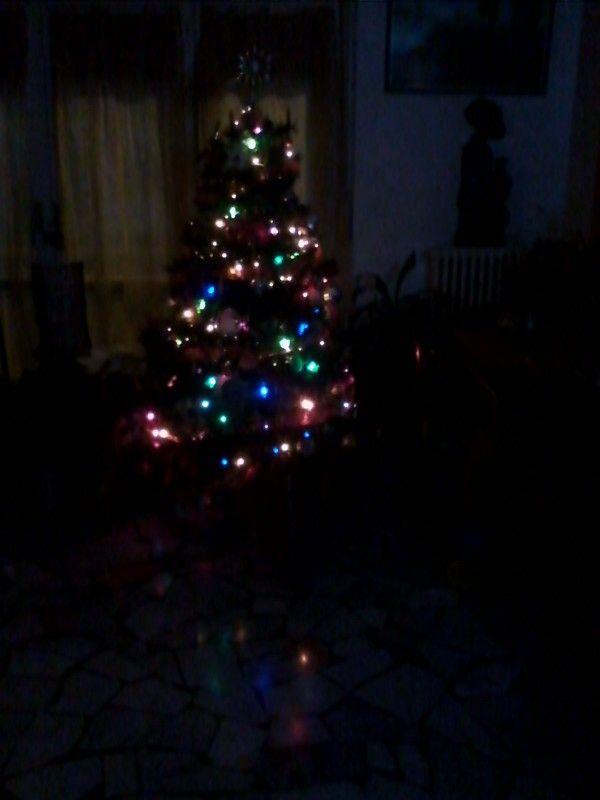 Natale 2013 famiglia Giacomozzi