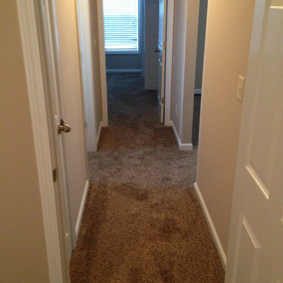 New Carpet That Was Installed In A House Here Cape Girardeau Mo The Hallway Leading Into Bedrooms