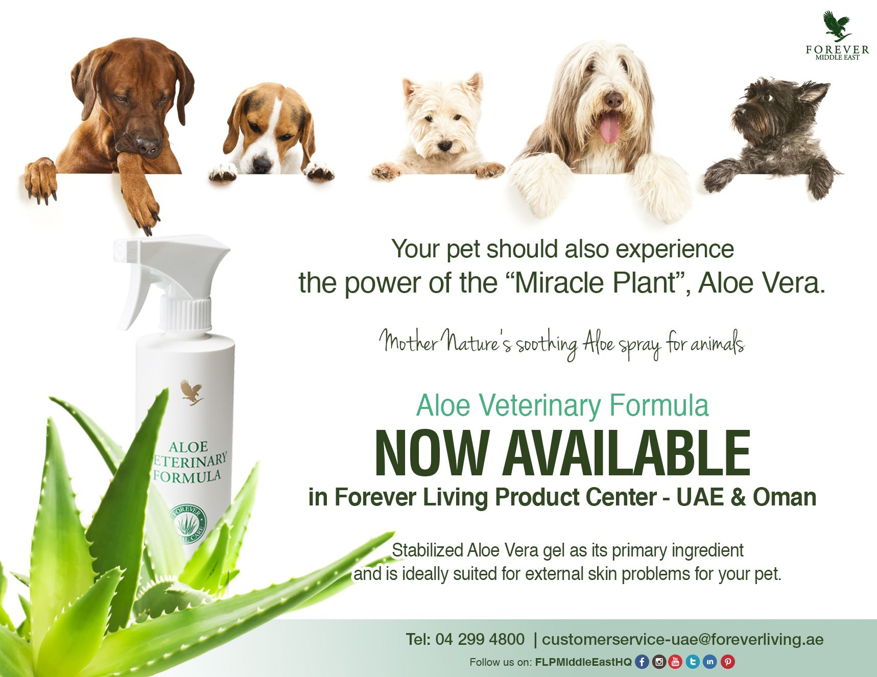 Aloe Veterinary Formula NOW Available in Forever Living