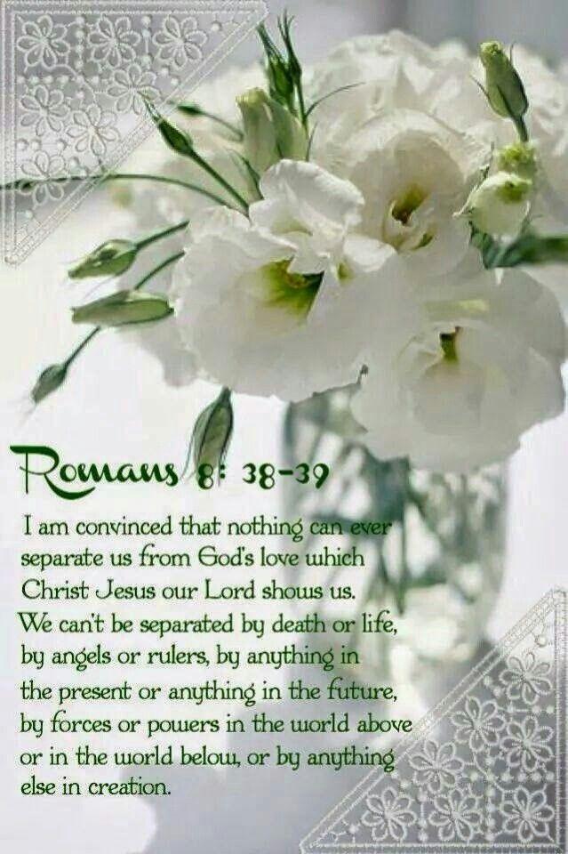 ROMANS 8 : 38-39