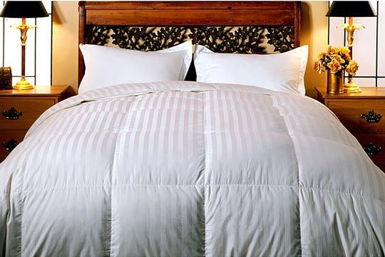 pierzyna goose down feather comforter
