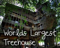 The Worldu0027s Largest Recycled Treehouse