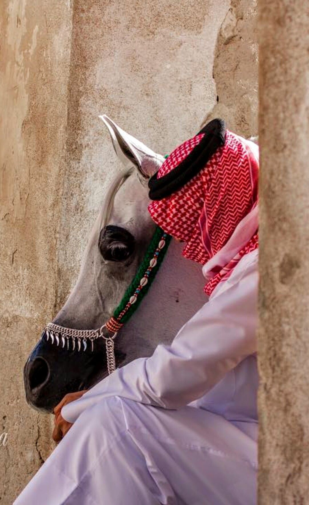 Pin By Hamza Allouh On Arabian Horse Arab Men Fashion Horse Girl Photography Arab Men