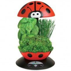 Aerogarden 3 Ladybug Gourmet Herbs Seed Kit Herb Seeds 400 x 300