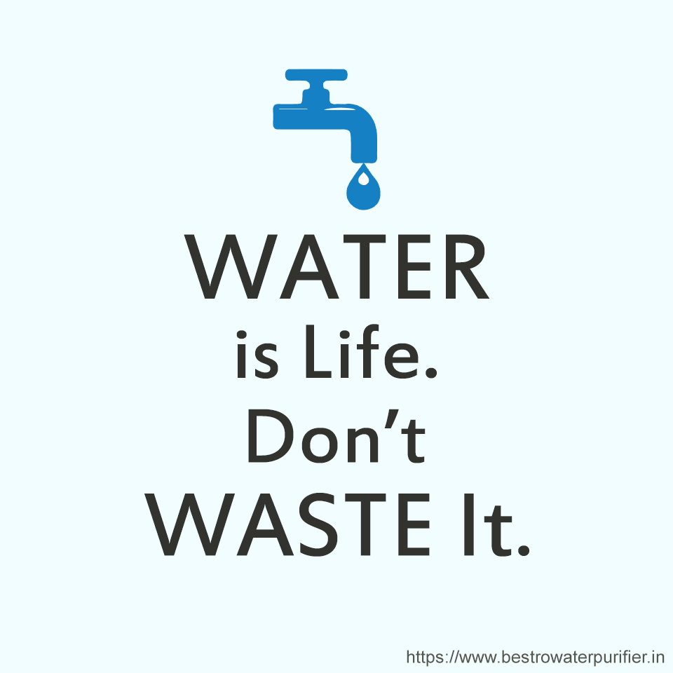 importance of water for life on earth