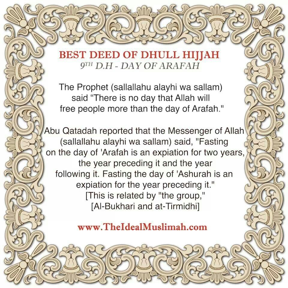 D day of Arafah   Dua's and Surah's   Arafah, Islamic quotes
