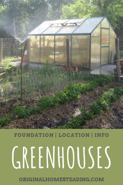 Greenhouse Gardening Easy Tips For Beginners Greenhouse Gardening Gardening For Beginners Greenhouse