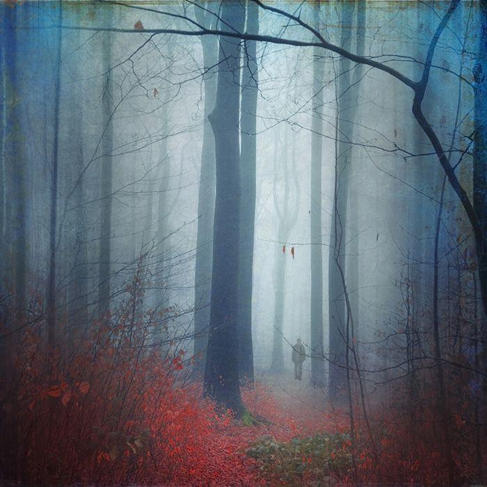 Don't Look Back, image by Dirk Wuestenhagen
