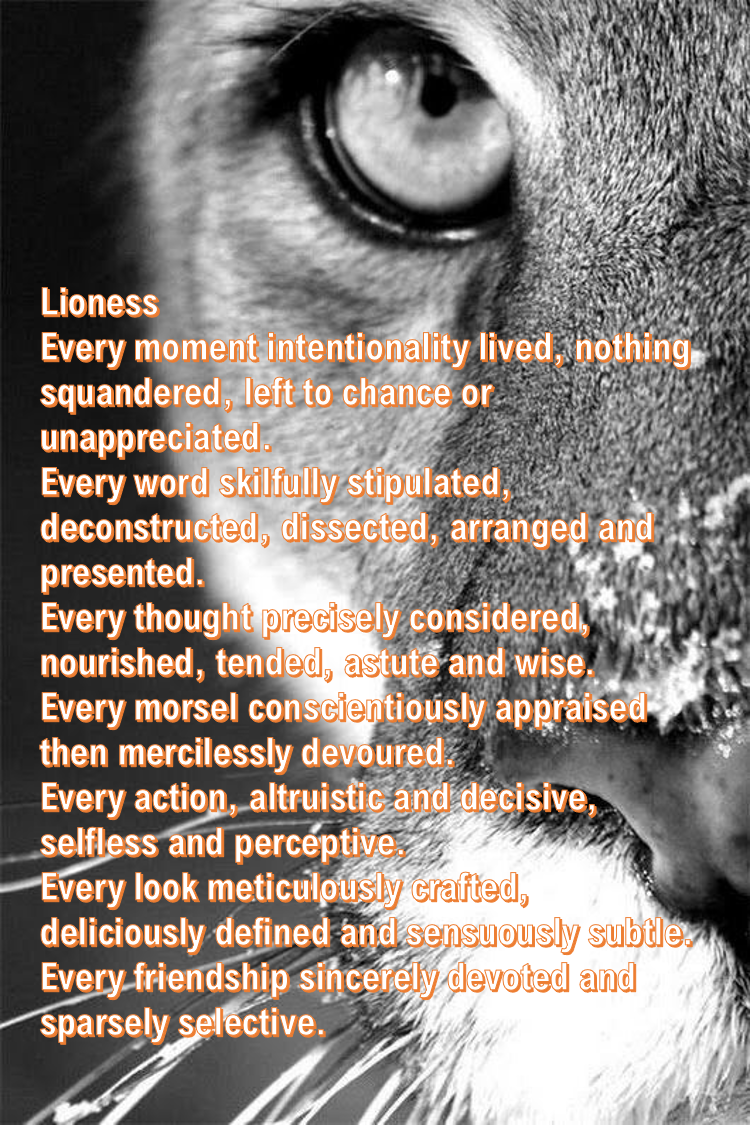 Lioness I wrote this poem for an amazing woman, while