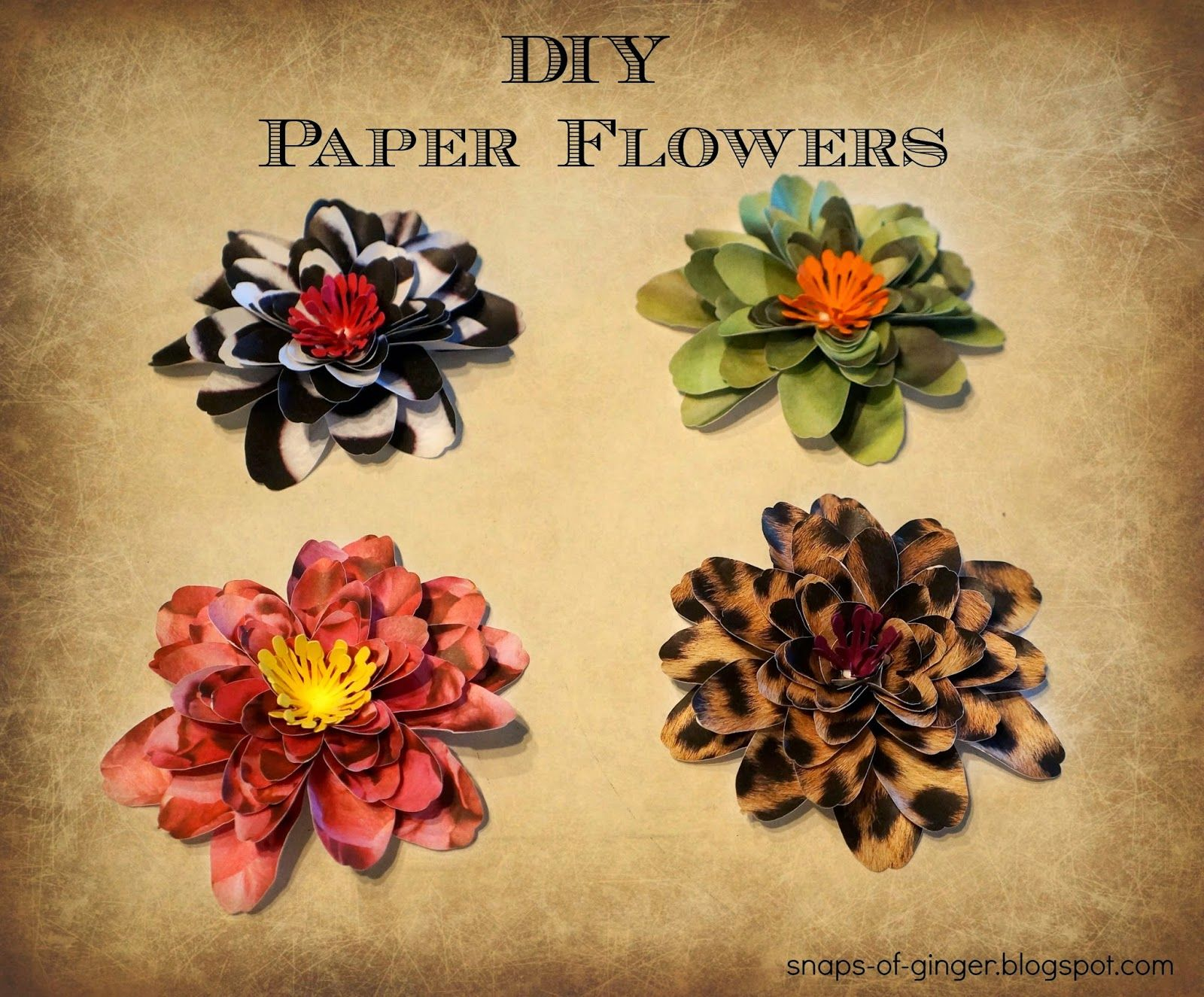 Snaps of Ginger: DIY Paper Flowers