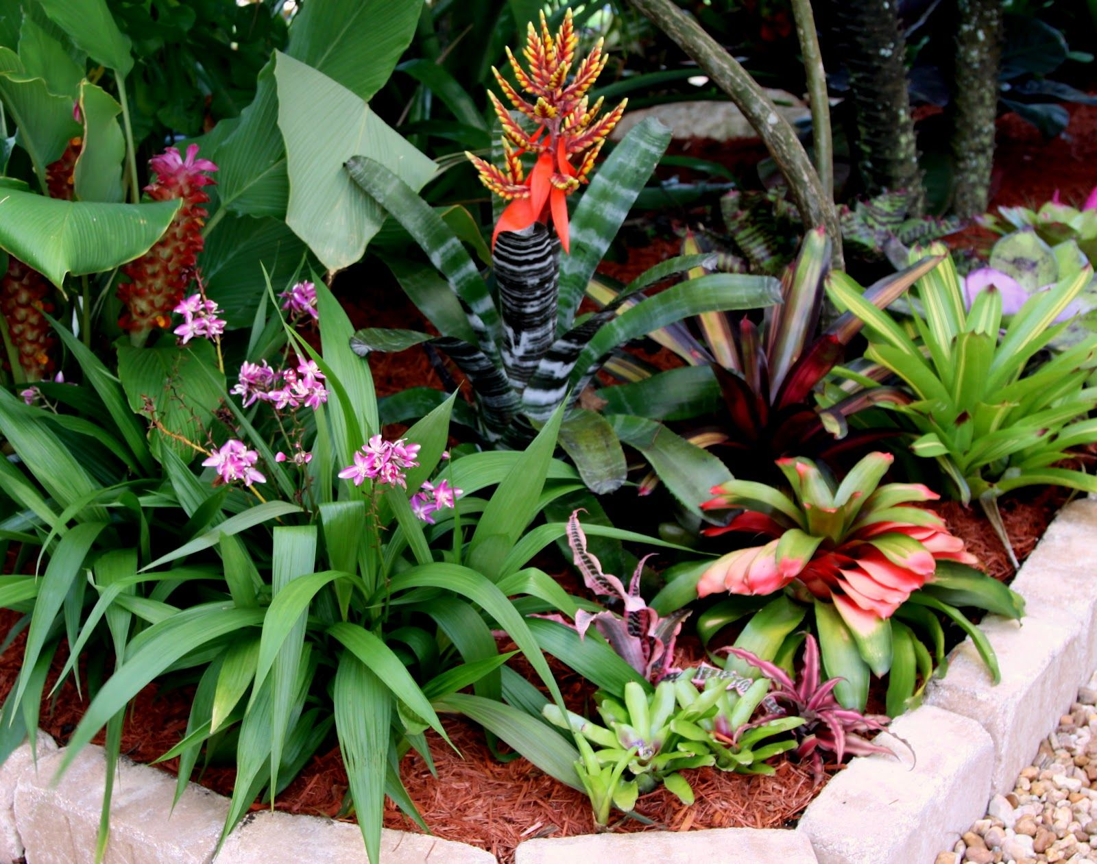 353 best Tropical Gardens images on Pinterest | Tropical plants ...