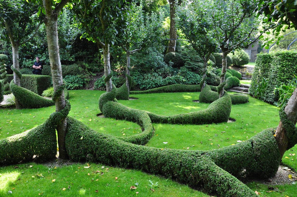 Pommiers et buis taill s la rencontre avec le grand launay jardin pinterest le pommier - Taille des buis ...