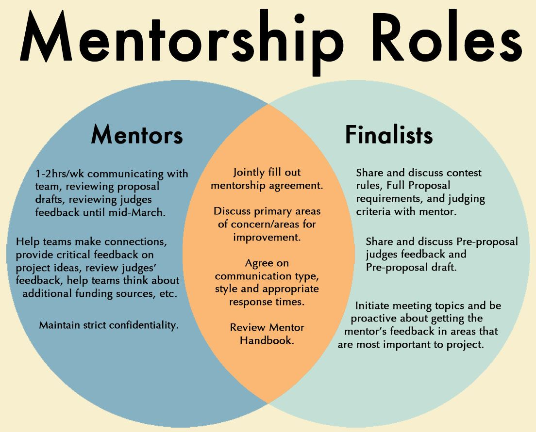 Mentorship Equity Diversity & Inclusion Teamwork