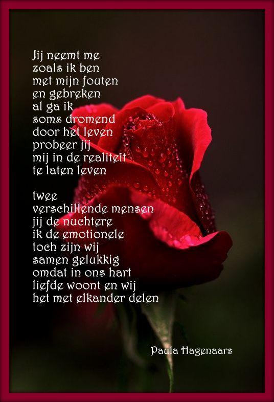 gedichten gedachten spreuken en nieuwtjes over het leven Gedichten Paula Hagenaars | Spreuken | Pinterest   Gedichten  gedichten gedachten spreuken en nieuwtjes over het leven