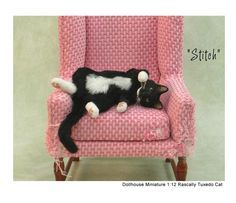 kerri Pajutee. Look at the chair! It's all clawed up. Just too cute.And a happy cat!