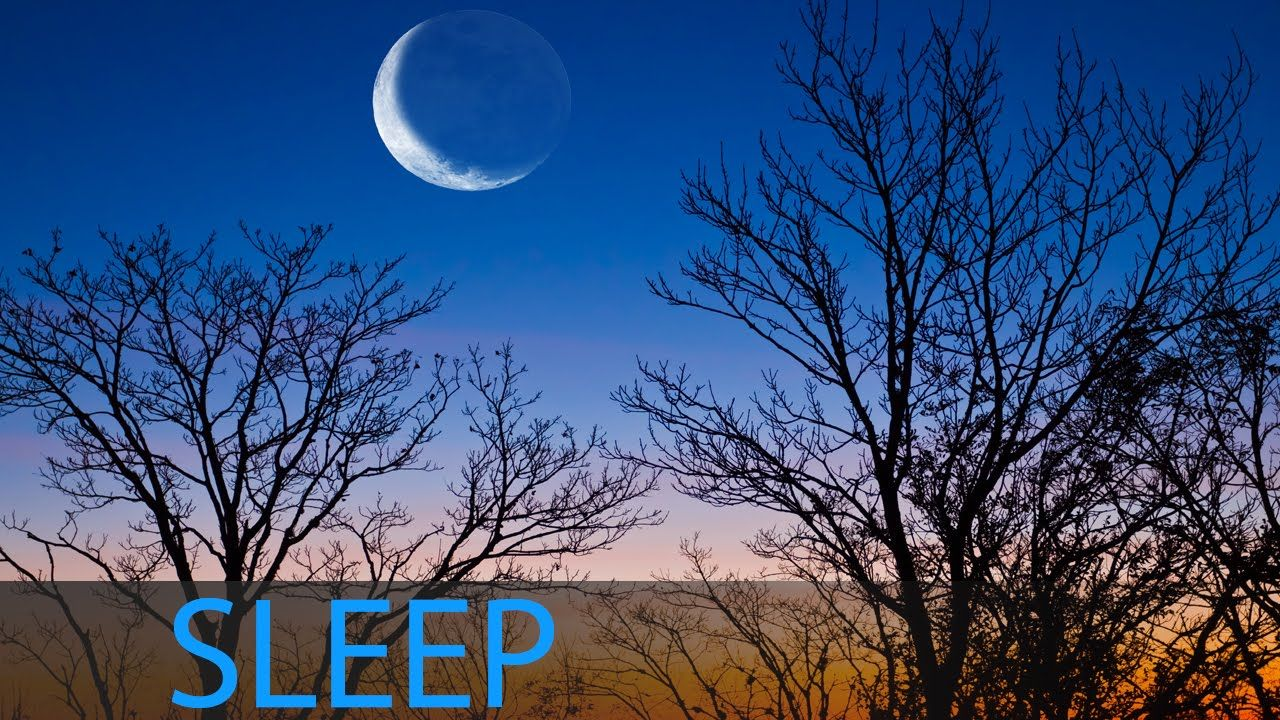 8 Hour Deep Sleep Music Relaxing Music Meditation Music Delta