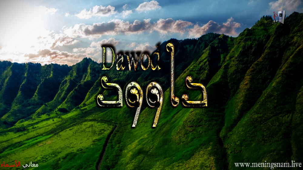 معنى اسم داوود وصفات حامل هذا الاسم Dawood Natural Landmarks Landmarks Neon Signs