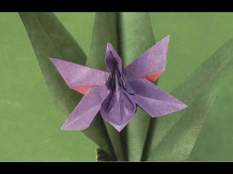 Origami Orchid Blossom Robert J Lang Youtube Origami Orchid Instructions Origami Orchid Origami Art