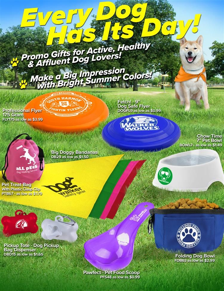 Pet Accessories From Garyline Pets Dog Gifts Dog Adventure
