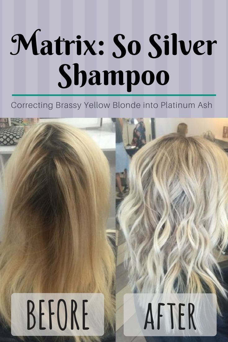 The best shampoo to lengthen life of blonde highlights go from hair coloring the best shampoo pmusecretfo Choice Image