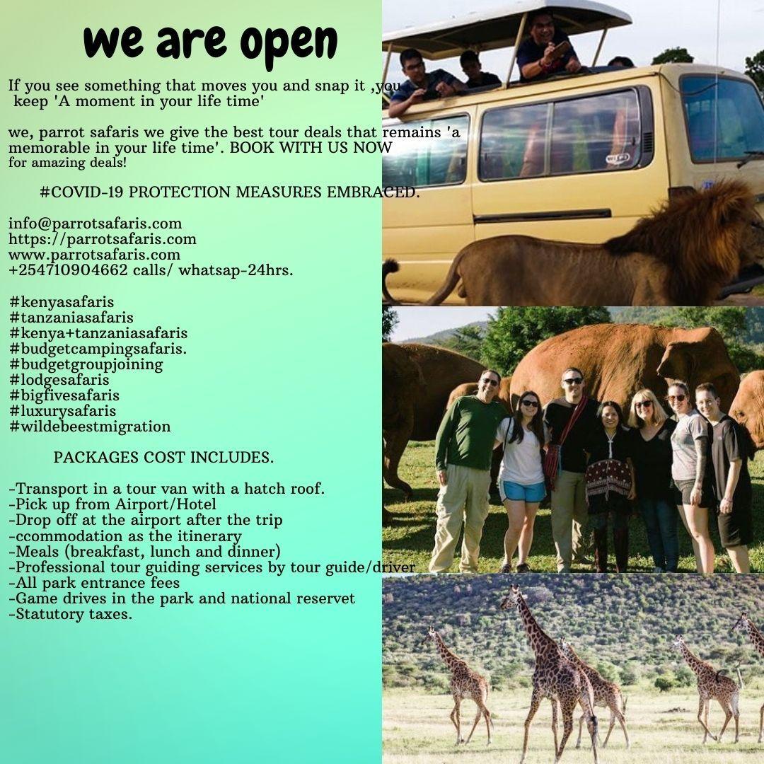 Safari Africa Safari National Park Lodges Service Trip