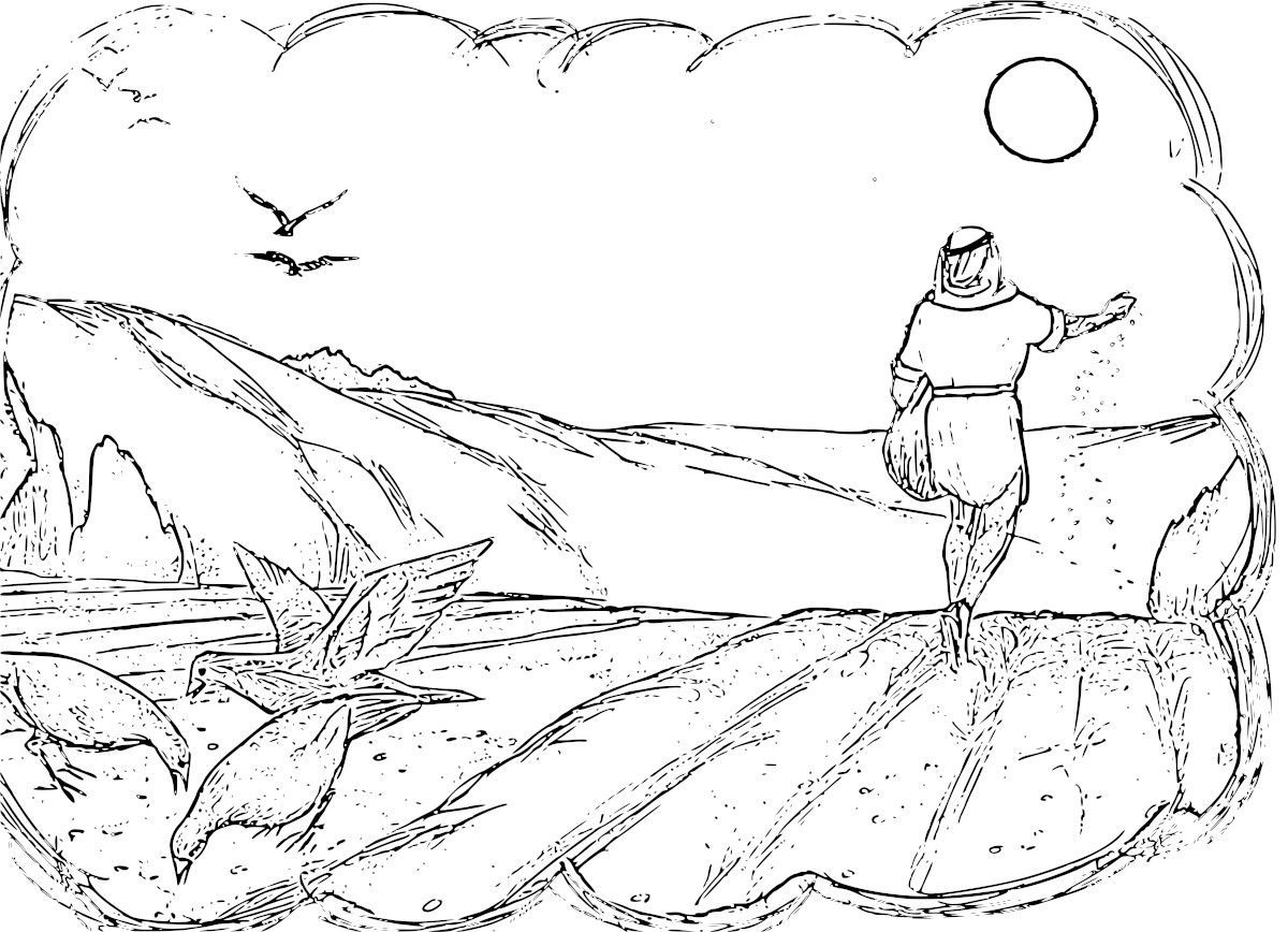 Parable Of The Sower Coloring Pages Many Links To