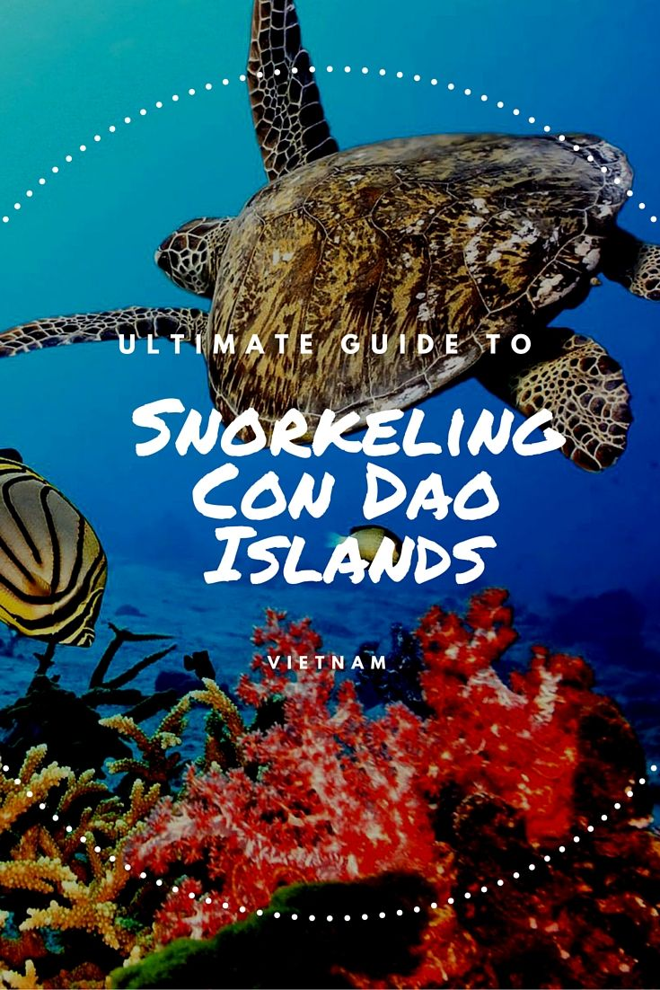 Complete Guide To Snorkeling The Con Dao Islands In Vietnam Con Dao Snorkeling Vietnam