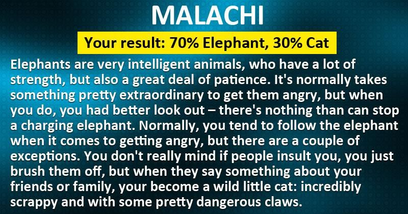 Which animal are you when you get angry?