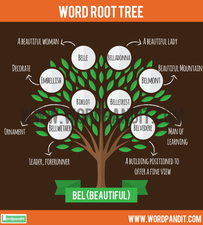 Know All About Bel Root Word And Get Words Based On Bel Root Words Words Word List