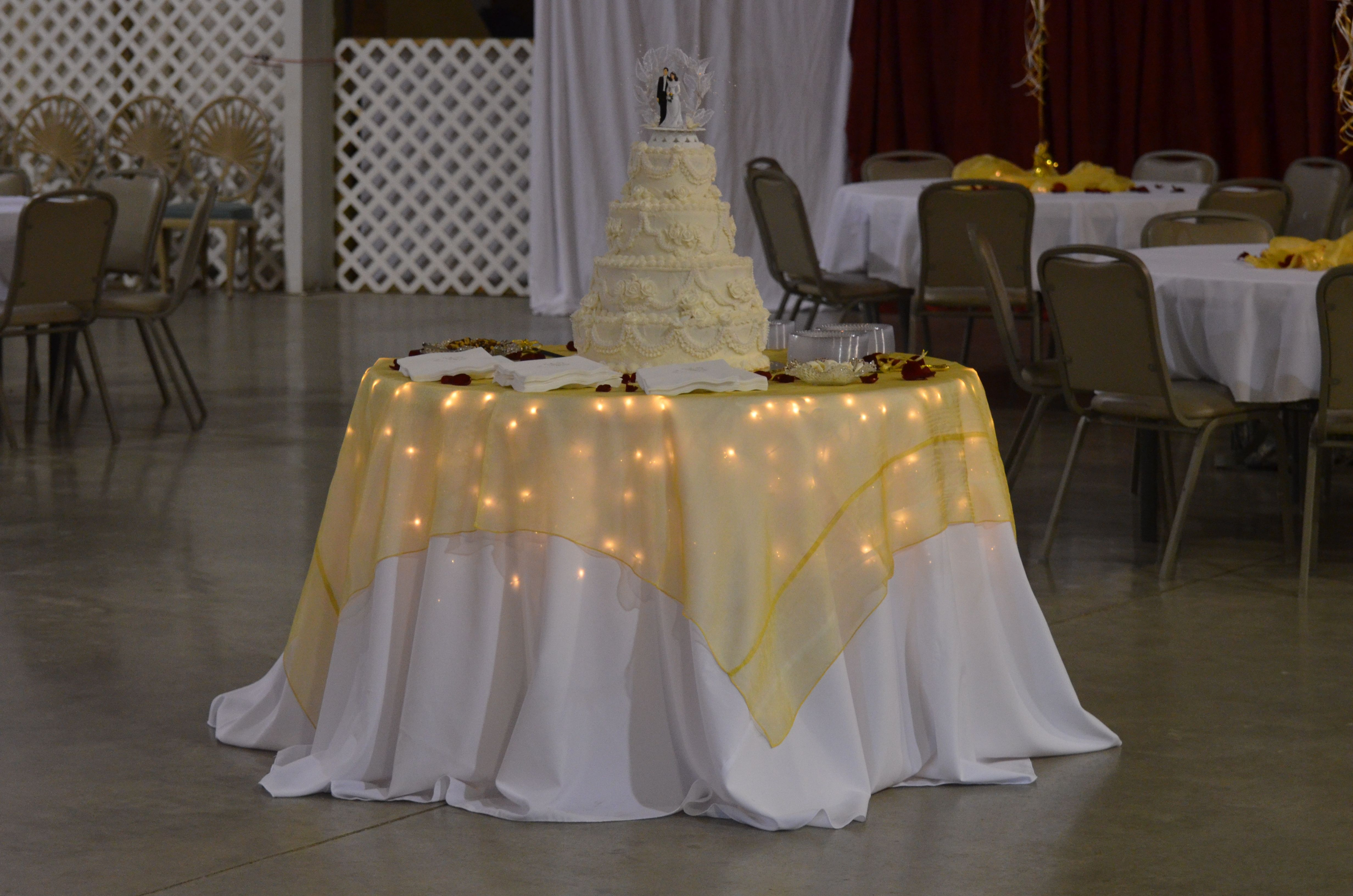 Superb Christmas Lights Under Table Cloth For The Outside Tables At The Wedding.  Easy!