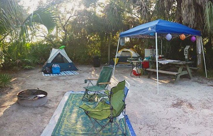 Grayton Beach State Park Is Nearly 2 000 Acres And Consists Of 59 Camping Sites Where Visitors Can