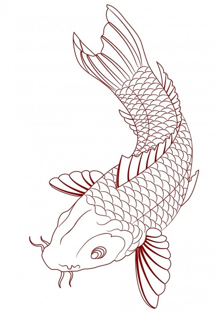 Simple Koi Fish Tattoo Sketch Tats Koi Fish Tattoo Koi Fish