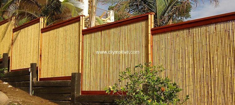 Bamboo Patio Fence Idea