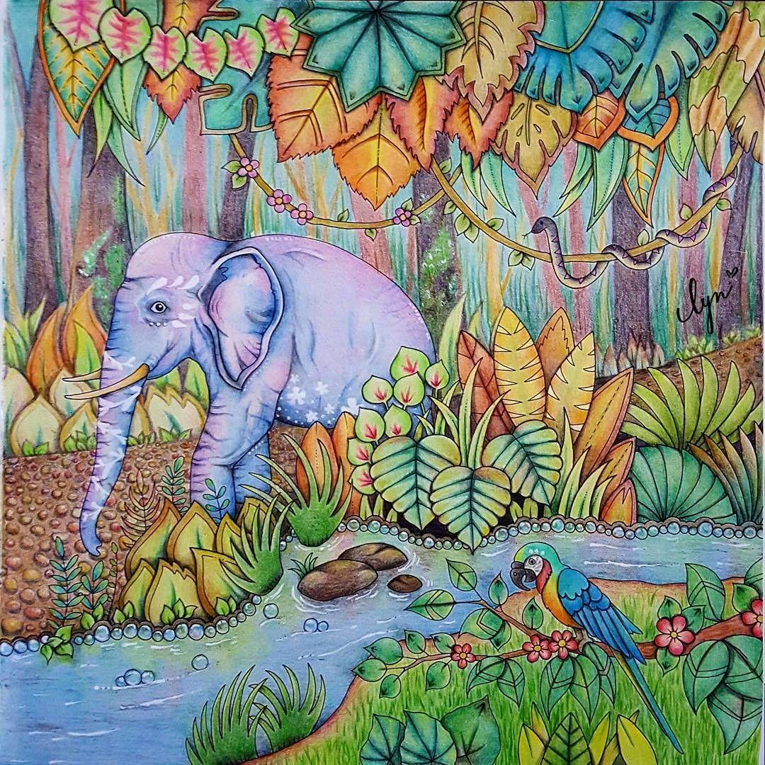 Elephant Johanna Basford Coloring Book Basford Coloring Book Adult Coloring Inspiration