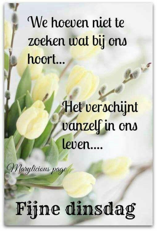 dinsdag spreuken Pin van Sarah Philippon op Adorable!!   Quotes, Good morning en Wisdom dinsdag spreuken