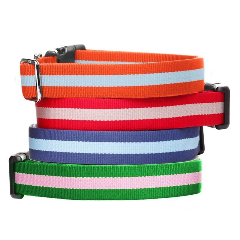 Eton Dog Collar Puppy Collars Dogs Dog Walking
