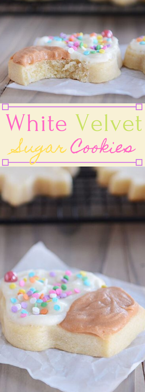 WHITE VELVET SUGAR COOKIES #desserts #cakes #cookies #pumpkin #velvet