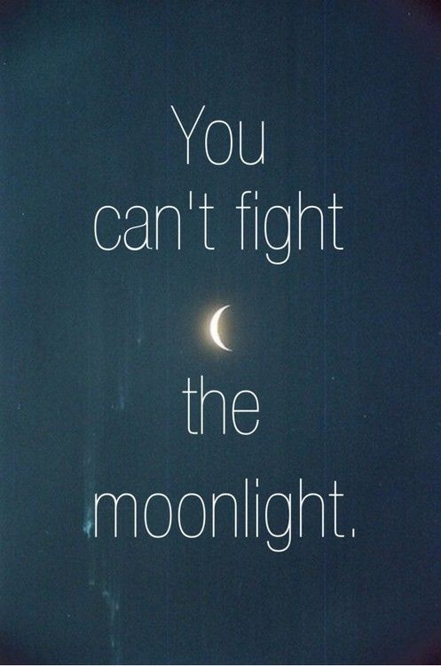 12312 Moon Quotes Moonlight Quotes Good Night Moon
