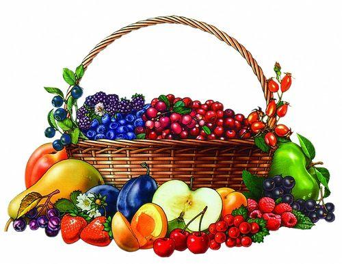 Lenagold - Клипарт - Овощи | 386x500
