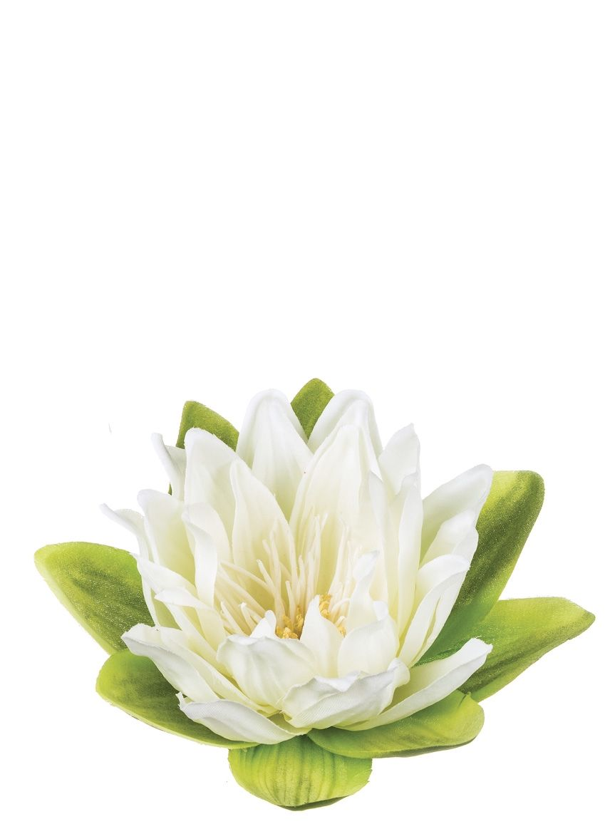 Lotus Floating Flower Sullivans Lily Pad In 2018 Floating
