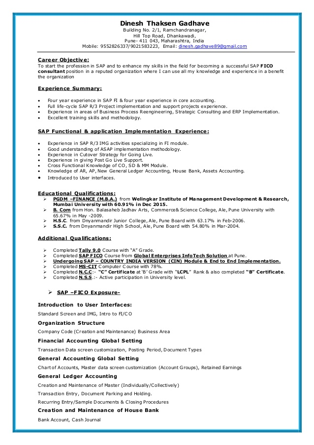 Sap Fico Resume Resume Summary Essay Writing Help Accounts Receivable