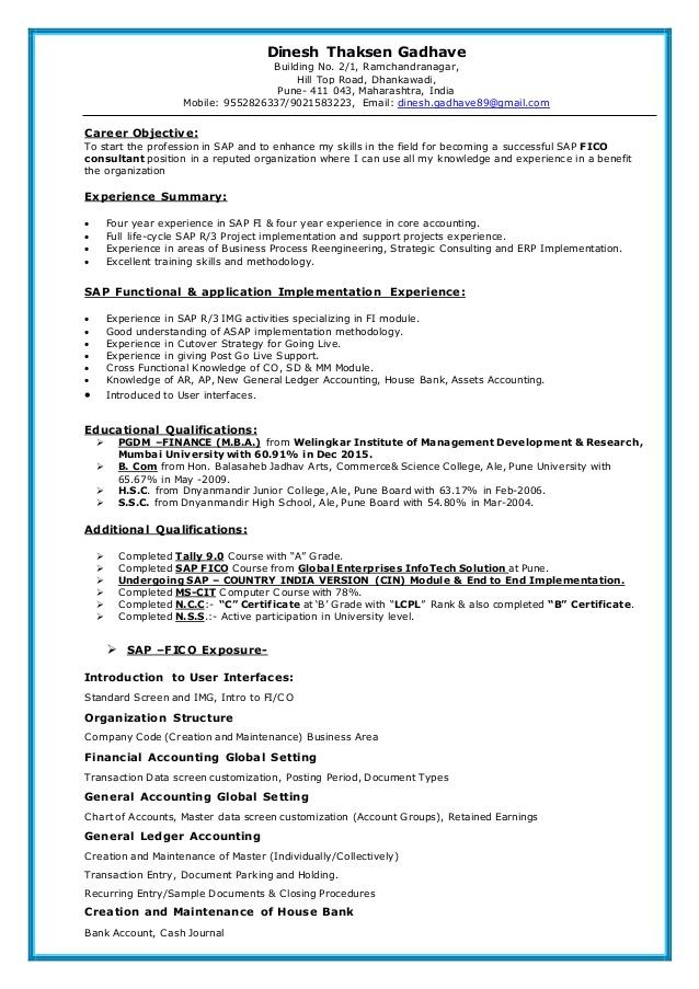 Sap Fico Resume Resume Summary Essay Writing Help Resume Words