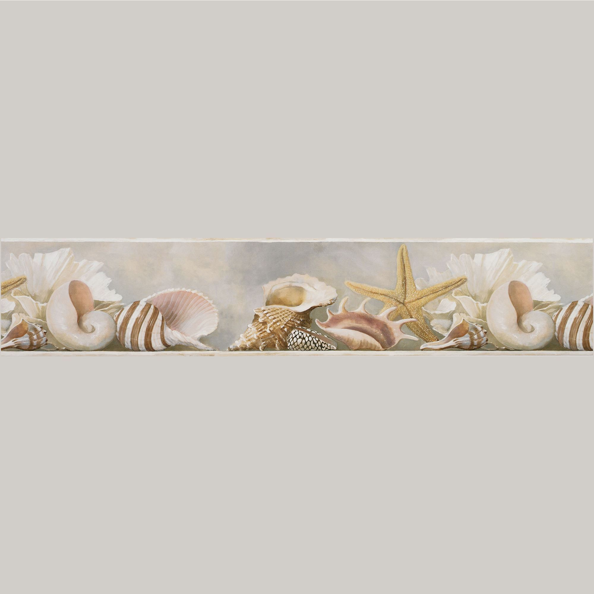 Coastal Shells Wallpaper Border Wallpaper border