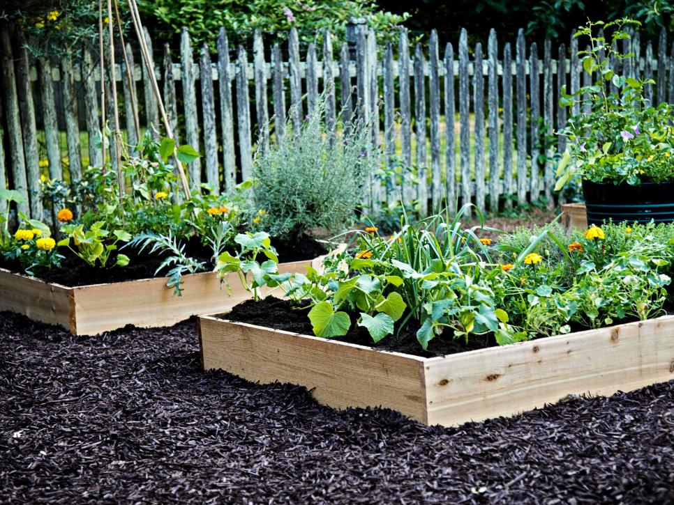 How to Fill Your Raised Garden Bed HGTV Plants, Raised