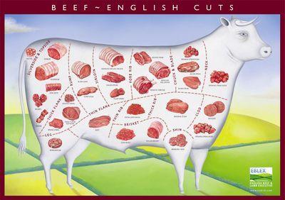 Photo of Beef – suitable cooking methods