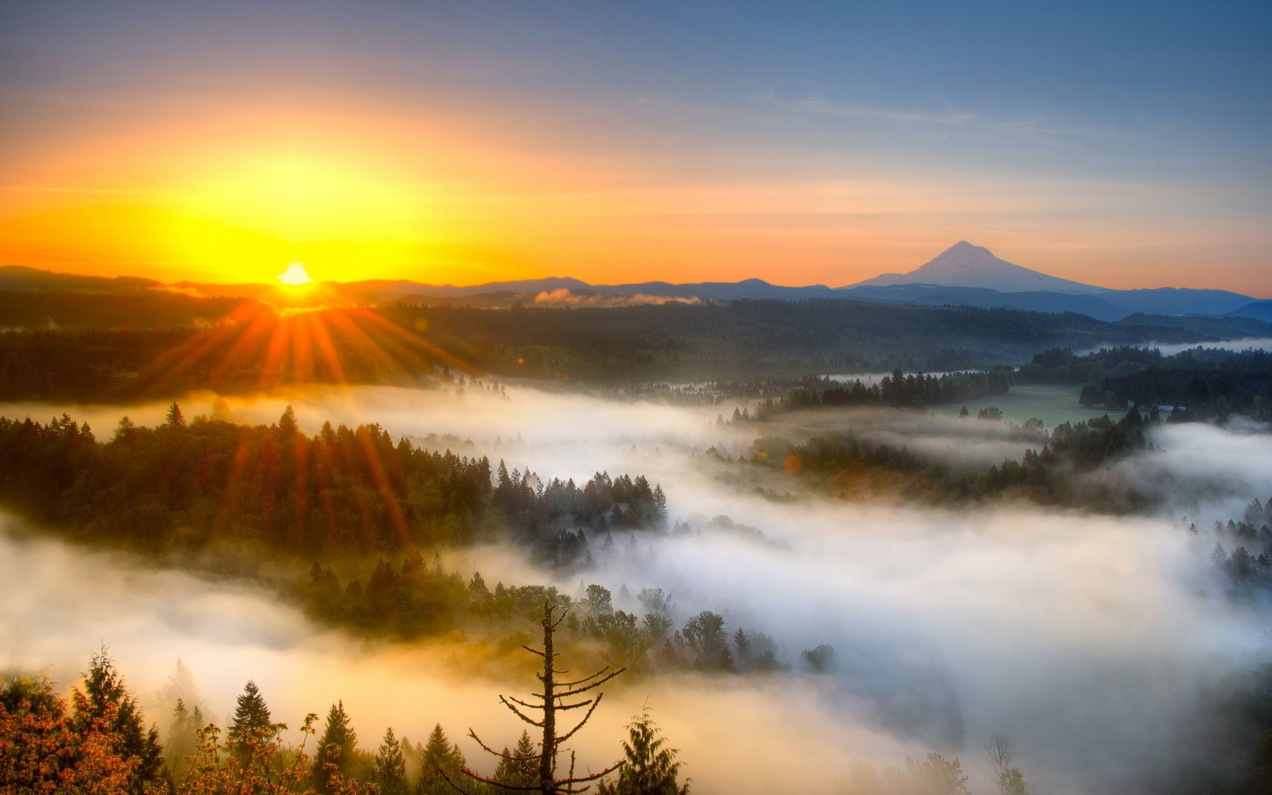 Morning Sunrise | Morning mist mountain sunrise Wallpaper ...