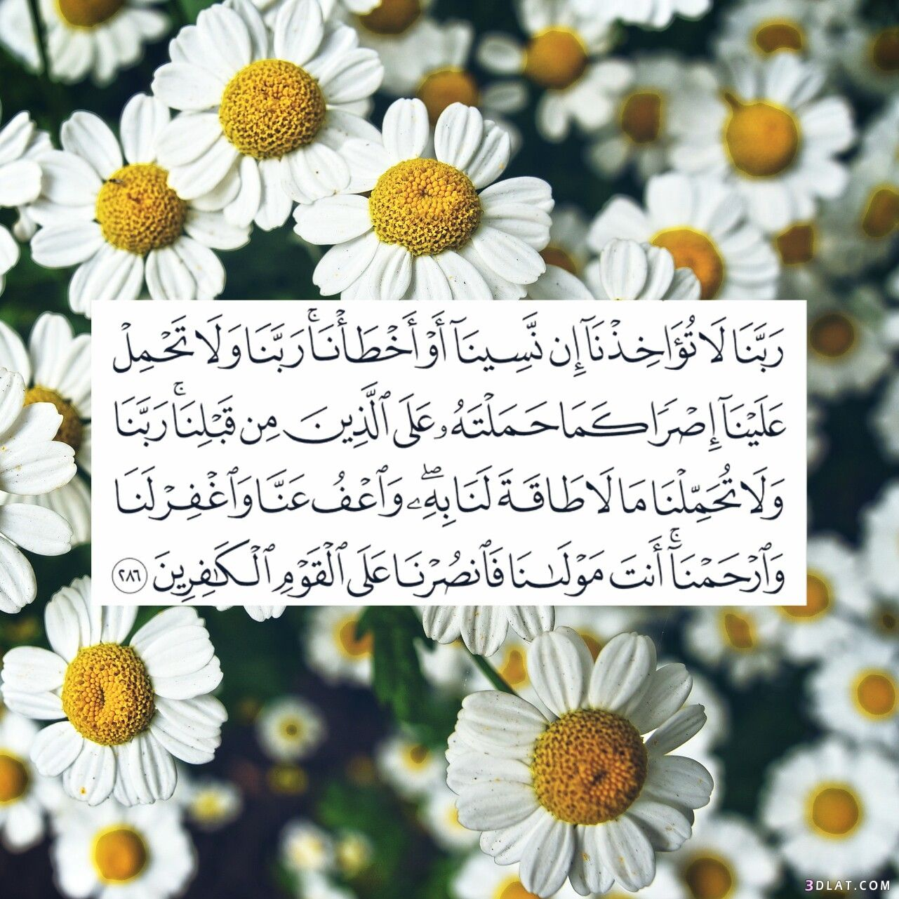 صور اسلامية جميلة جدا رمزيات اسلامية بطاقات اسلامية ادعية اسلامية
