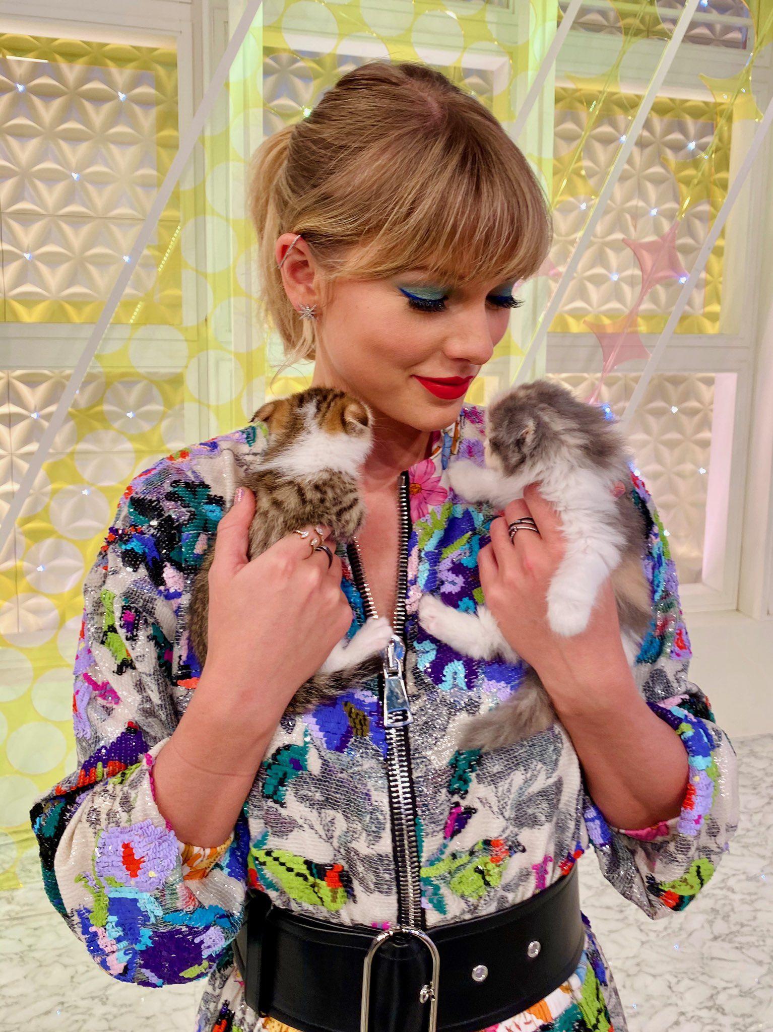 Taylor Swift on Twitter in 2020 Taylor swift cat, Taylor