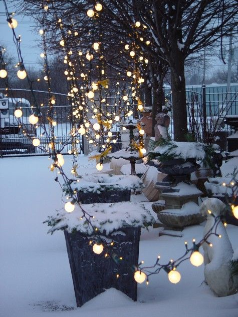 Mixed Christmas Light Bulbs White Christmas Lights